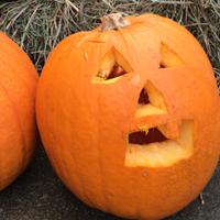 Herbstmarkt_text_2